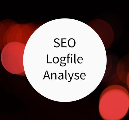 SEO Logfile Analyse